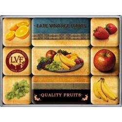 Magneetset Quality Fruits